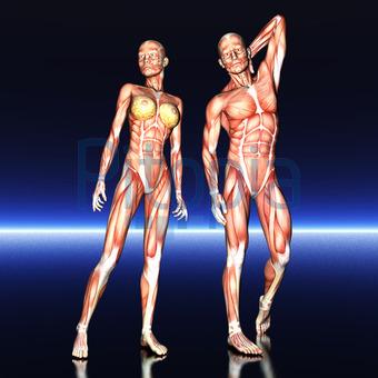 Einer frau körperbau ▷ Körperfettanteil: