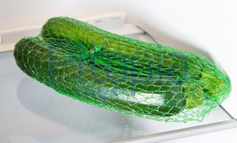 Kühlschrank Querformat : Bildagentur pitopia bilddetails zucchini im kühlschrank bei