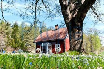 Schwedisches Holzhaus bildagentur pitopia bilddetails typisches schwedisches holzhaus