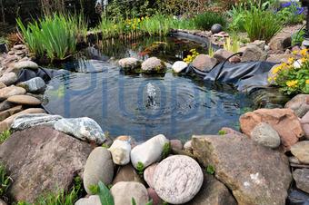 Bildagentur Pitopia Bilddetails Gartenteich Anabpictures Bild