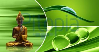 Wellness bilder grün  Bildagentur Pitopia - Bilddetails - Wellness (Atteloi) Bild ...