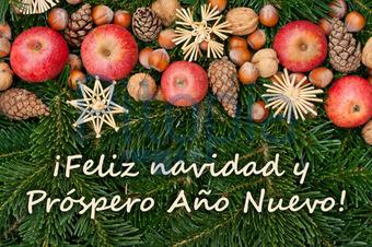 Weihnachtsgrüße Auf Spanisch.Bildagentur Pitopia Bilddetails Christmas Card Cora Müller