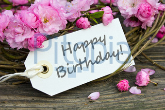 Bildagentur Pitopia Bilddetails Geburtstagskarte Cora Muller