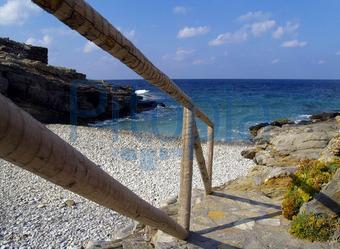 Weg zum Strand (Torsten Lorenz)  - lizenzfrei (royalty free)