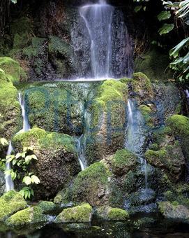 Bildagentur Pitopia Bilddetails Wasserfall Im Garten Emer Bild