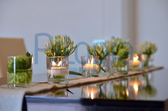 Bildagentur Pitopia Bilddetails Tischdekoration Eskimo Bild