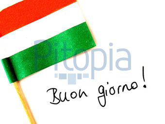 Bildagentur Pitopia Bilddetails Italien Ewe