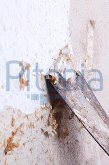 Bildagentur Pitopia Bilddetails Tapete Entfernen Roland