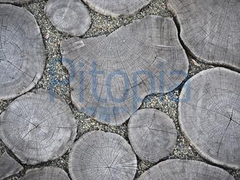 Fußboden Aus Holzscheiben ~ Bildagentur pitopia bilddetails holzscheiben heike jestram