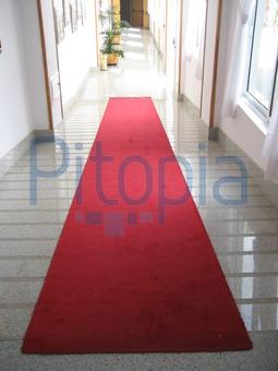 Läufer Teppich Flur teppich fr flur teppich lufer nach ma beige karo cm breit meterware