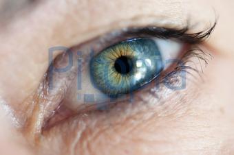 Bildagentur Pitopia Bilddetails Das Auge Imaginis Bild 757963