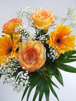 Bildagentur Pitopia Bilddetails Blumenstrauss I Dagmar