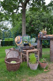 Bildagentur Pitopia Bilddetails Dekoration Im Bauerngarten