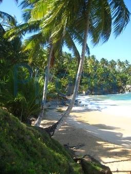 Bildagentur Pitopia Bilddetails Dominikanische Republik Julia