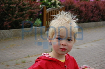 Bildagentur Pitopia Bilddetails Sturmfrisur Kati Breuer Bild