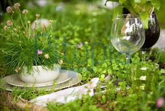 Bildagentur Pitopia Bilddetails Naturliche Tischdeko Grischa