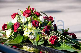 Bildagentur Pitopia Bilddetails Hochzeit Sport Moments Bild