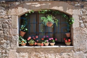 Bildagentur Pitopia Bilddetails Fenster Mit Vielen Blumentopfen